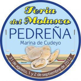Almejas y otros moluscos en Pedreña