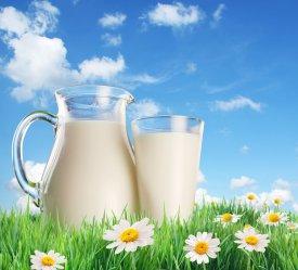 El calcio de la leche es vital