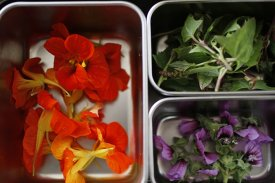 Caramelizar flores