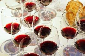 Cata vinos preferidos Rekondo