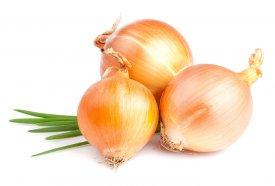 Clases de cebolla
