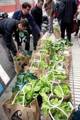 Feria de agricultura ecologica