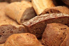 Harina espelta trigo