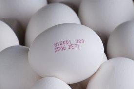 Huevos con fecha de caducidad