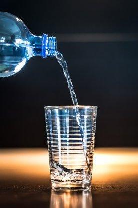Ingesta diaria de agua