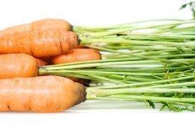 zanahorias y antioxidantes