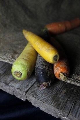 Origen de la zanahoria