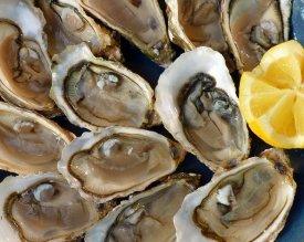 Un plato de ostras