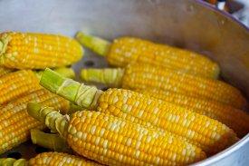 Recetas innovadoras con maíz