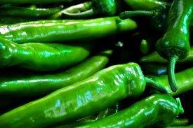 Varios pimientos verdes