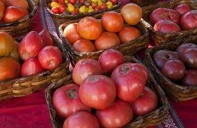 Distintas clases de tomate
