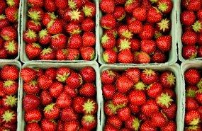 Fruta envasada