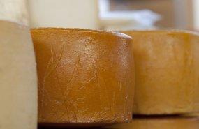 Una selección de quesos