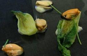 Cogollos con vinagreta y mejillones
